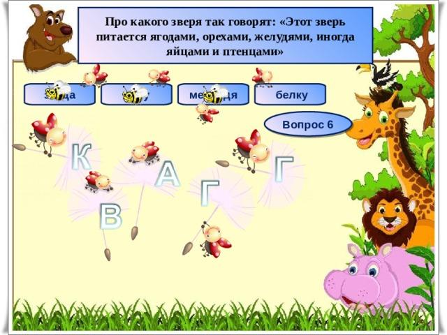 Про какого зверя так говорят: «Этот зверь питается ягодами, орехами, желудями, иногда яйцами и птенцами» лису медведя  белку зайца Вопрос 6