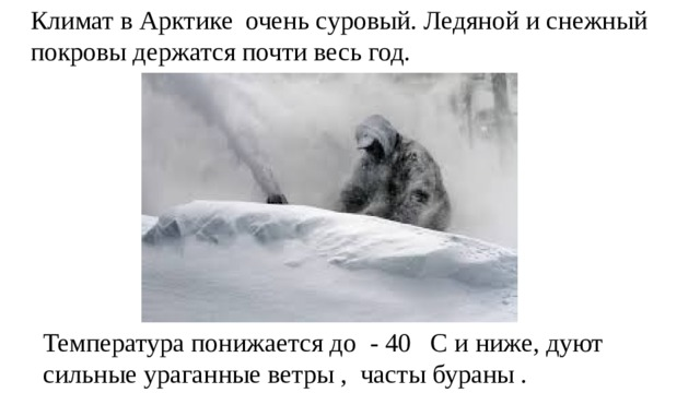 Климат в Арктике очень суровый. Ледяной и снежный покровы держатся почти весь год. Температура понижается до - 40 С и ниже, дуют сильные ураганные ветры , часты бураны .