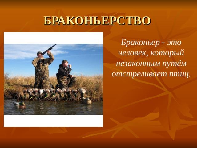 БРАКОНЬЕРСТВО Браконьер - это человек, который незаконным путём отстреливает птиц.