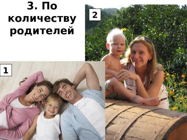3. По количеству родителей 2 1
