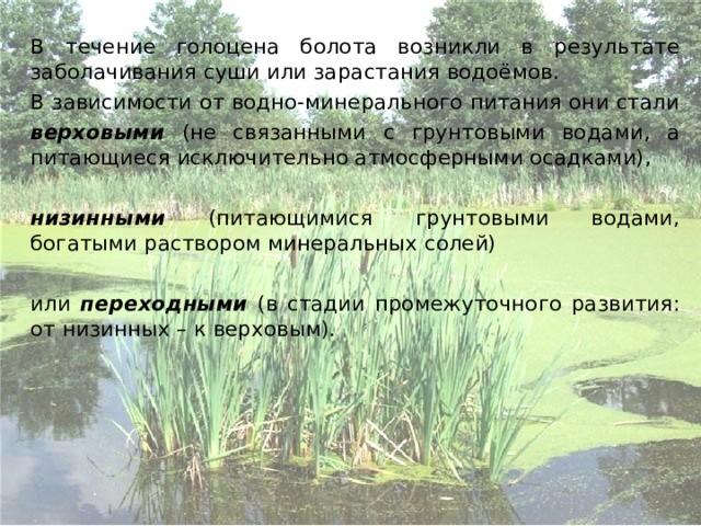 В течение голоцена болота возникли в результате заболачивания суши или зарастания водоёмов.   В зависимости от водно-минерального питания они стали   верховыми (не связанными с грунтовыми водами, а питающиеся исключительно атмосферными осадками),   низинными (питающимися грунтовыми водами, богатыми раствором минеральных солей)   или переходными (в стадии промежуточного развития: от низинных – к верховым).