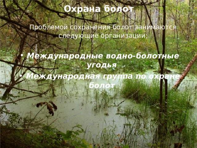 Охрана болот  Проблемой сохранения болот занимаются следующие организации: