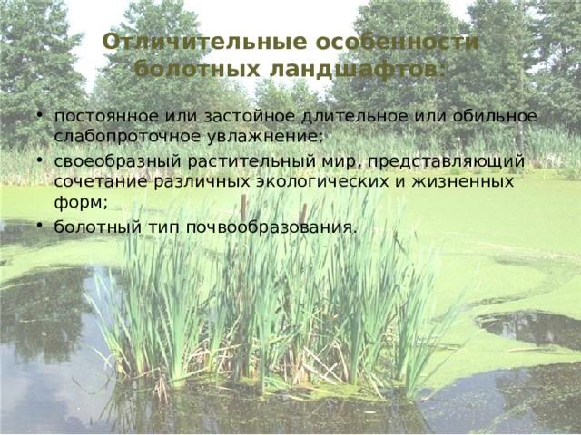 Отличительные особенности болотных ландшафтов: