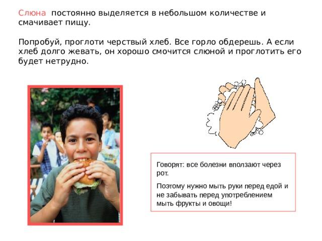 Слюна  постоянно выделяется в небольшом количестве и смачивает пищу.   Попробуй, проглоти черствый хлеб. Все горло обдерешь. А если хлеб долго жевать, он хорошо смочится слюной и проглотить его будет нетрудно. Говорят: все болезни вползают через рот. Поэтому нужно мыть руки перед едой и не забывать перед употреблением мыть фрукты и овощи!