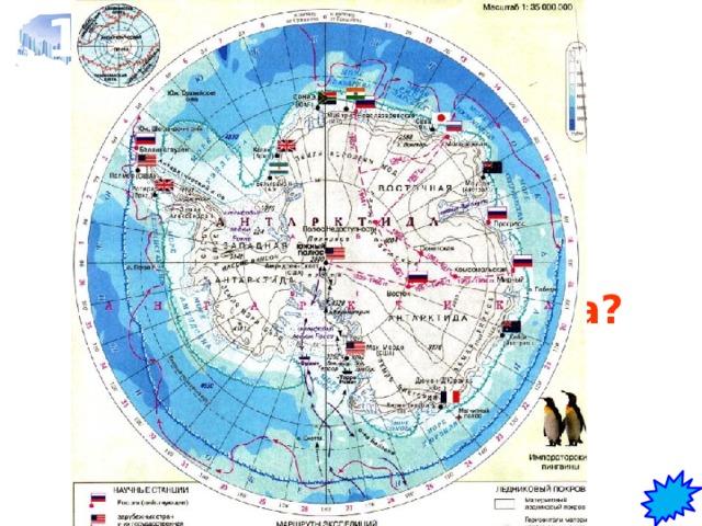 1 Когда началось планомерное исследование Антарктиды по программе Международного геофизического года?   В 1957 г.
