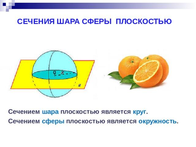 СЕЧЕНИЯ ШАРА СФЕРЫ ПЛОСКОСТЬЮ Сечением шара плоскостью является круг . Сечением сферы плоскостью является окружность .