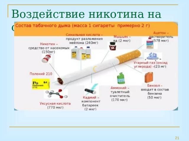 Воздействие никотина на организм