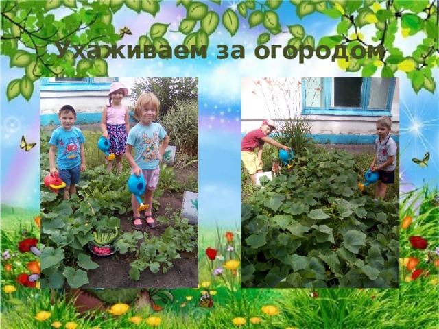 Ухаживаем за огородом