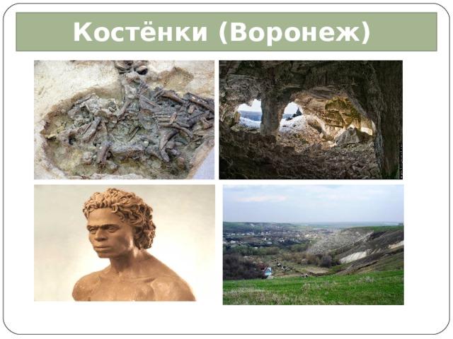 Костёнки (Воронеж)