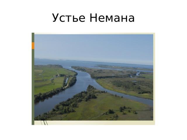 Устье Немана