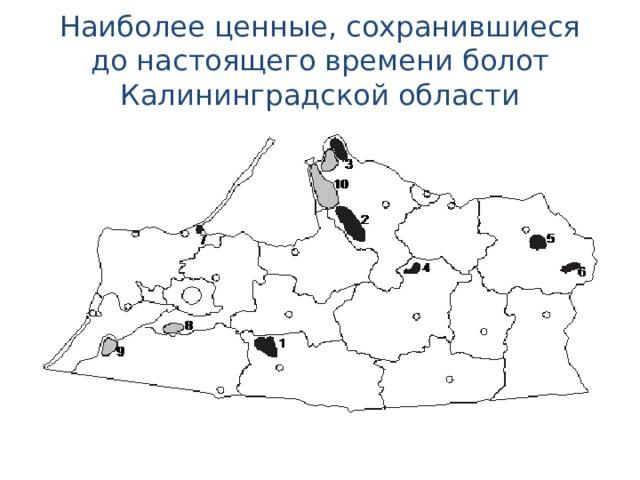 Наиболее ценные, сохранившиеся до настоящего времени болот Калининградской области