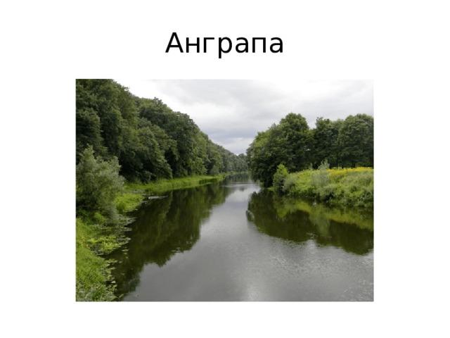 Анграпа