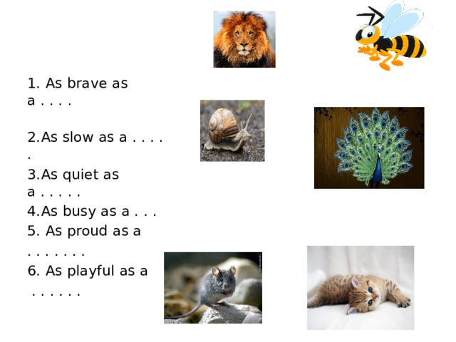 1. As brave as a . . . . 2.As slow as a . . . . . 3.As quiet as a . . . . . 4.As busy as a . . . 5. As proud as a . . . . . . . 6. As playful as a  . . . . . .
