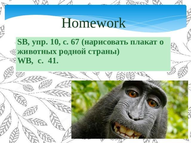 Homework SB, упр. 10, с. 67 (нарисовать плакат о животных родной страны) WB, с. 41.