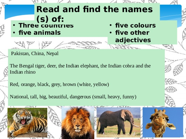 Read and find the names (s) of: Three countries five animals five colours five other adjectives  Pakistan, China, Nepal The Bengal tiger, deer, the Indian elephant, the Indian cobra and the Indian rhino Red, orange, black, grey, brown (white, yellow) National, tall, big, beautiful, dangerous (small, heavy, funny)