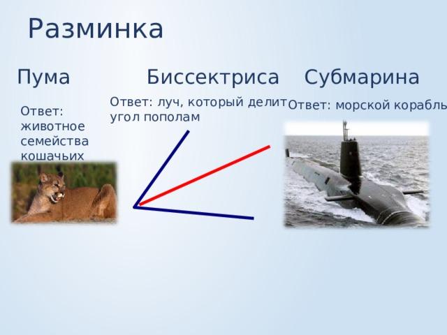 Разминка Пума Субмарина Биссектриса Ответ: луч, который делит угол пополам Ответ: морской корабль Ответ: животное семейства кошачьих