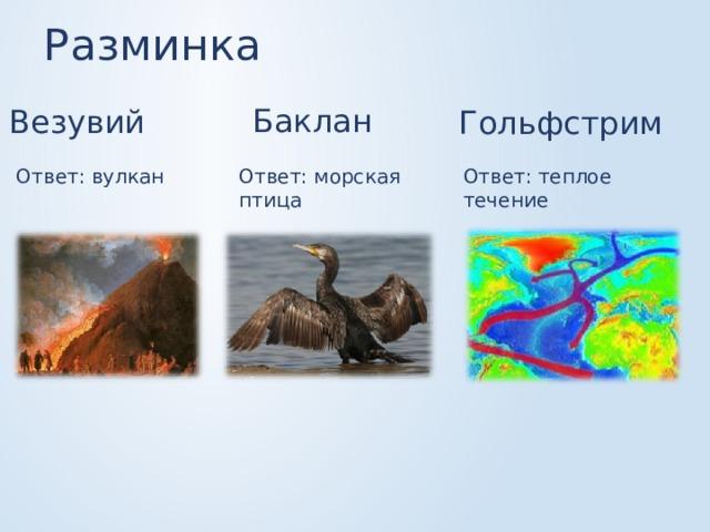 Разминка Баклан Везувий Гольфстрим Ответ: вулкан Ответ: теплое течение Ответ: морская птица
