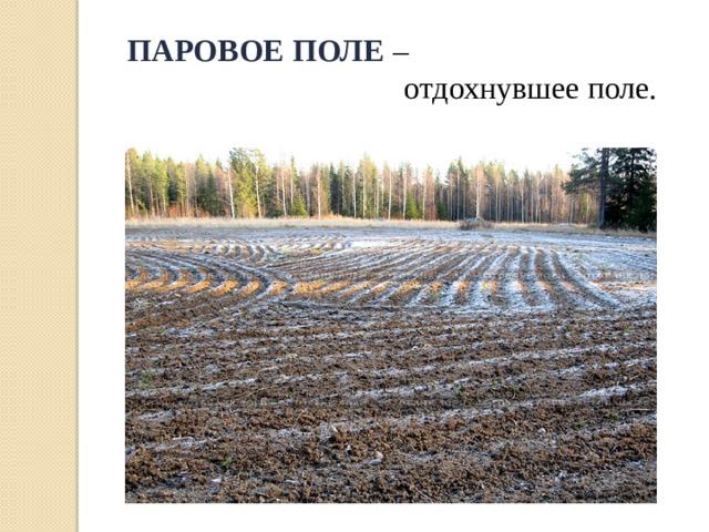 ПАРОВОЕ ПОЛЕ  –  отдохнувшее поле.
