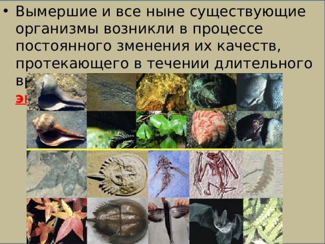 Вымершие и все ныне существующие организмы возникли в процессе постоянного зменения их качеств, протекающего в течении длительного времени, т.н. возникли в процессе эволюции.