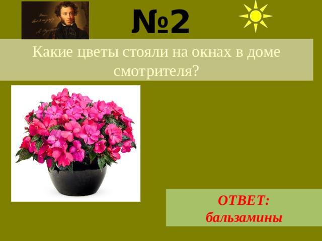 № 2  Какие цветы стояли на окнах в доме смотрителя?  ОТВЕТ: бальзамины