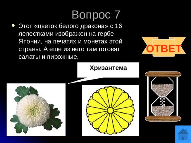 Вопрос 7 Этот «цветок белого дракона» с 16 лепестками изображен на гербе Японии, на печатях и монетах этой страны. А еще из него там готовят салаты и пирожные. ОТВЕТ Хризантема