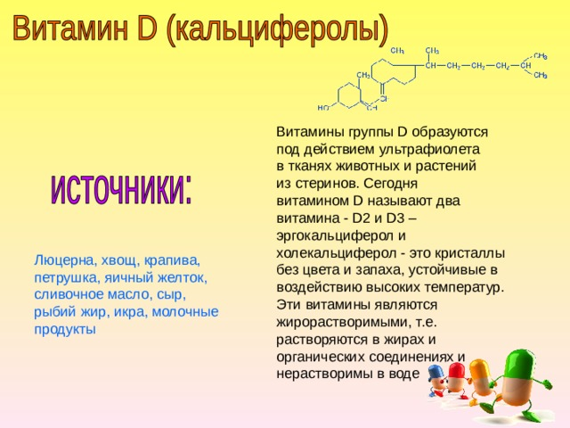 Витамины группы D образуются под действием ультрафиолета в тканях животных и растений из стеринов. Сегодня витамином D называют два витамина - D2 и D3 – эргокальциферол и холекальциферол - это кристаллы без цвета и запаха, устойчивые в воздействию высоких температур. Эти витамины являются жирорастворимыми, т.е. растворяются в жирах и органических соединениях и нерастворимы в воде Люцерна, хвощ, крапива, петрушка, яичный желток, сливочное масло, сыр, рыбий жир, икра, молочные продукты