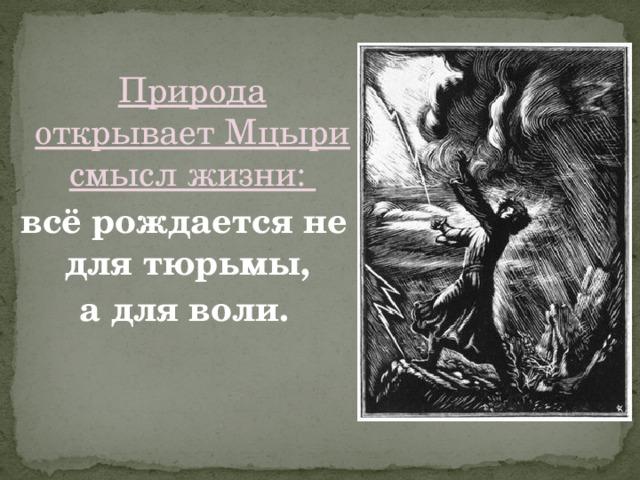 Природа открывает Мцыри смысл жизни: всё рождается не для тюрьмы, а для воли.