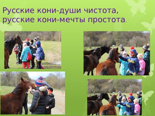 Русские кони-души чистота, русские кони-мечты простота .