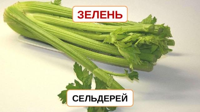 ЗЕЛЕНЬ СЕЛЬДЕРЕЙ