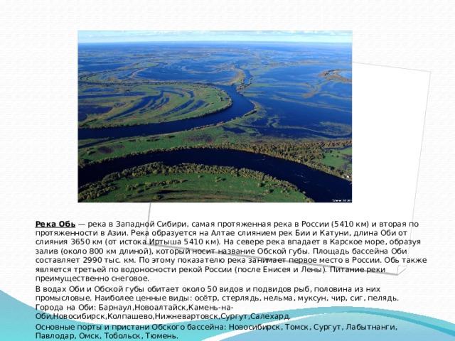 Река Обь — река в Западной Сибири, самая протяженная река в России (5410 км) и вторая по протяженности в Азии. Река образуется на Алтае слиянием рек Бии и Катуни, длина Оби от слияния 3650 км (от истока Иртыша 5410 км). На севере река впадает в Карское море, образуя залив (около 800 км длиной), который носит название Обской губы. Площадь бассейна Оби составляет 2990 тыс. км. По этому показателю река занимает первое место в России. Обь также является третьей по водоносности рекой России (после Енисея и Лены). Питание реки преимущественно снеговое. В водах Оби и Обской губы обитает около 50 видов и подвидов рыб, половина из них промысловые. Наиболее ценные виды: осётр, стерлядь, нельма, муксун, чир, сиг, пелядь. Города на Оби: Барнаул,Новоалтайск,Камень-на-Оби,Новосибирск,Колпашево,Нижневартовск,Сургут,Салехард. Основные порты и пристани Обского бассейна:Новосибирск, Томск, Сургут, Лабытнанги, Павлодар, Омск, Тобольск, Тюмень.
