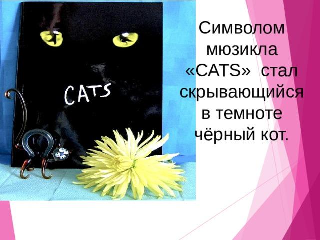 Символом мюзикла «CATS» стал скрывающийся в темноте чёрный кот.