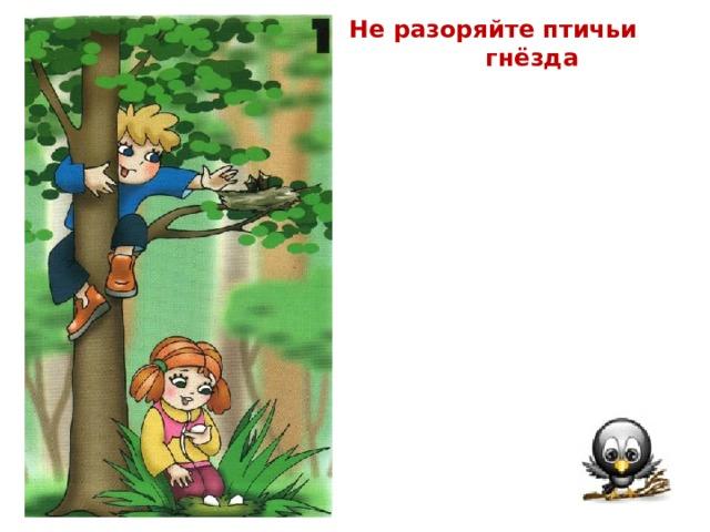 Не разоряйте птичьи гнёзда Дети запомнить должны И понять: Гнёзда у птичек Нельзя разорять!   Если в траве  Увидали яйцо  Или услышали  Крики птенцов,  Не приближайтесь,  Не лезьте туда  И не тревожьте  Ни птиц, ни гнезда.