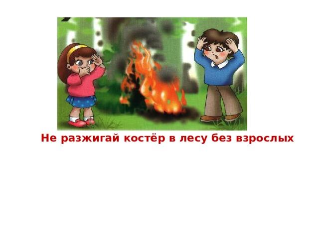 Не разжигай костёр в лесу без взрослых Без взрослых с огнём развлекаться опасно – Закончиться может забава ужасно. В лесу очень сухо бывает порой, Костёр обернётся серьёзной бедой!  Представьте, что пламя легко разгорится,  Начнёт полыхать, разбегаться искриться –  Его потушить невозможно тогда…  Пожары лесные – большая беда!