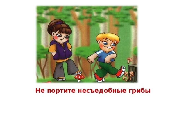 Не портите несъедобные грибы В лесу грибов различных много… Ты несъедобные не трогай! В корзинку их не собирай, Но и ногами не сбивай… Нужны они лесным зверятам: Лисичкам, ёжикам, зайчатам… Их только люди не едят: В поганках, мухоморах – яд! Но для зверья лесного всё ж Тот гриб полезен и хорош.