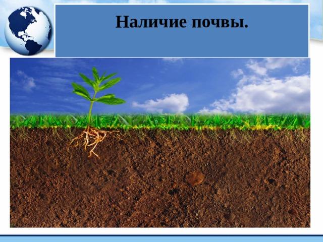 Наличие почвы.