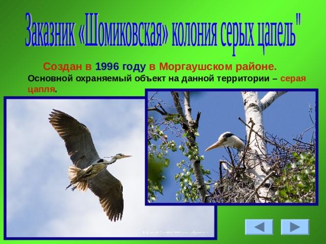 Создан в 1996  году в Моргаушском районе. Основной охраняемый объект на данной территории – серая цапля .