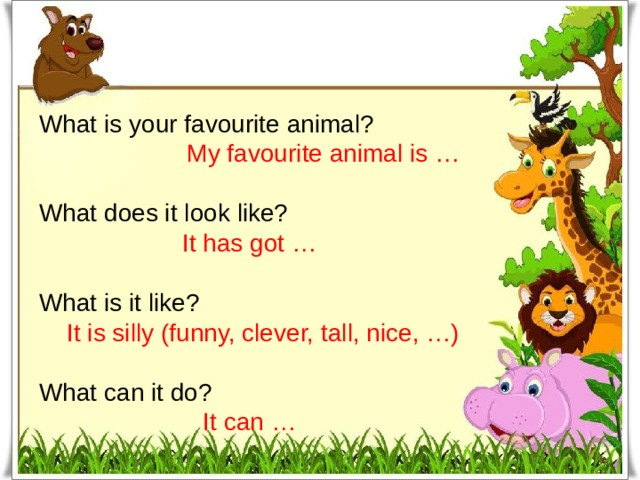What is your favourite animal? My favourite animal is … What does it look like? It has got … What is it like? It is silly (funny, clever, tall, nice, …) What can it do? It can …