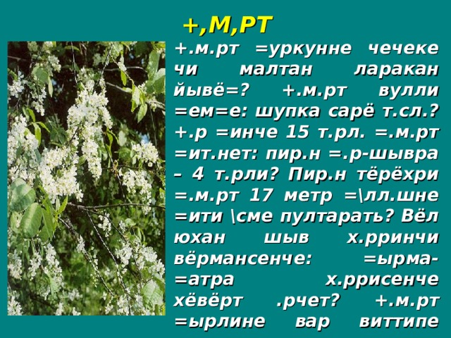 +,М,РТ +.м.рт =уркунне чечеке чи малтан ларакан йывё=? +.м.рт вулли =ем=е: шупка сарё т.сл.? +.р =инче 15 т.рл. =.м.рт =ит.нет: пир.н =.р-шывра – 4 т.рли? Пир.н тёрёхри =.м.рт 17 метр =\лл.шне =ити \сме пултарать? Вёл юхан шыв х.рринчи вёрмансенче: =ырма-=атра х.ррисенче хёвёрт .рчет? +.м.рт =ырлине вар виттипе аптракан =ынна =итере==.?