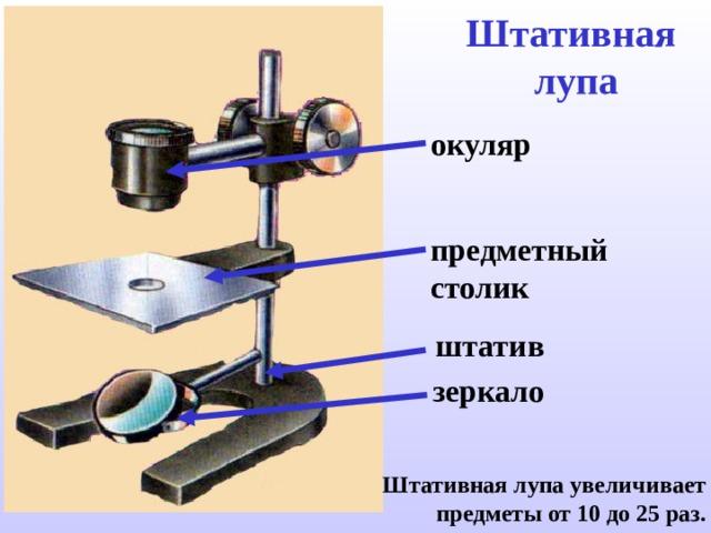 Штативная  лупа окуляр предметный столик штатив зеркало Штативная лупа увеличивает предметы от 10 до 25 раз.