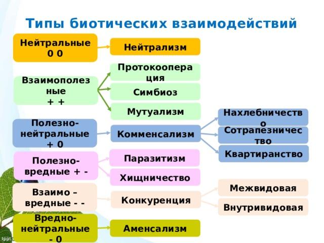 Типы биотических взаимодействий Нейтральные 0 0 Нейтрализм Протокооперация Взаимополезные + + Симбиоз Мутуализм Нахлебничество Полезно- нейтральные + 0 Комменсализм Сотрапезничество Квартиранство Паразитизм Полезно- вредные + - Хищничество Межвидовая Взаимо – вредные - - Конкуренция Внутривидовая Вредно- нейтральные - 0 Аменсализм