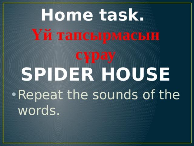 Home task.  Үй тапсырмасын сұрау  SPIDER HOUSE