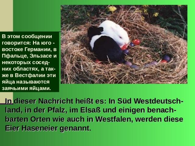 В этом сообщении говорится: На юго - востоке Германии, в Пфальце, Эльзасе и некоторых сосед-них областях, а так-же в Вестфалии эти яйца называются заячьими яйцами. In dieser Nachricht heißt es: In Süd Westdeutsch - land, in der Pfalz, im Elsaß und einigen benach - barten Orten wie auch in Westfalen, werden diese Eier Haseneier genannt .