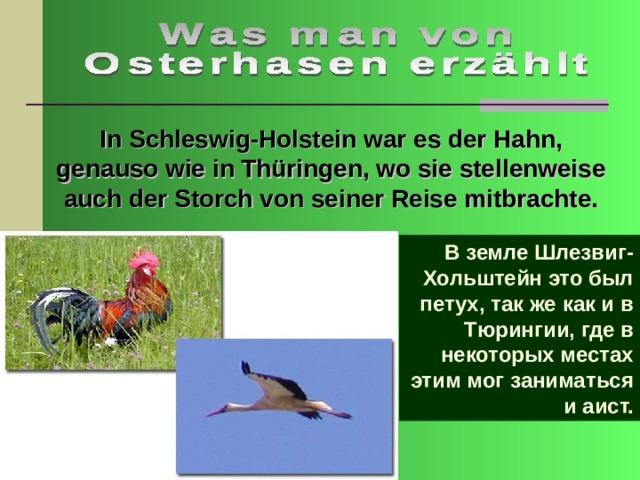 In Schleswig-Holstein war es der Hahn, genauso wie in Thüringen, wo sie stellenweise auch der Storch von seiner Reise mitbrachte. В земле Шлезвиг-Хольштейн это был петух, так же как и в Тюрингии, где в некоторых местах этим мог заниматься и аист.