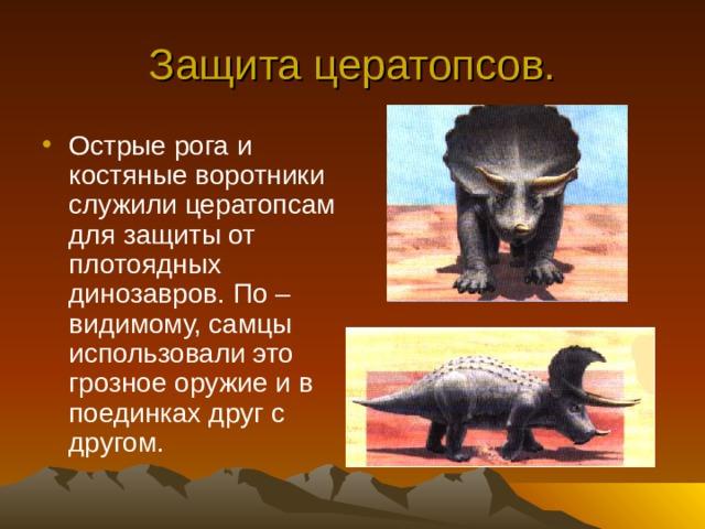 Защита цератопсов.