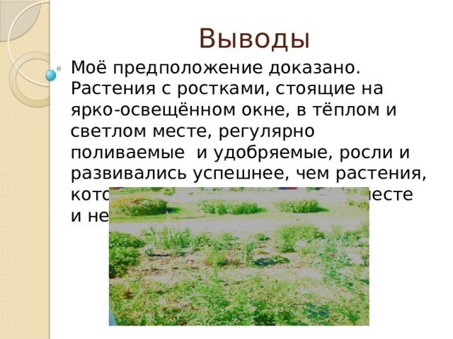 Выводы Моё предположение доказано. Растения с ростками, стоящие на ярко-освещённом окне, в тёплом и светлом месте, регулярно поливаемые и удобряемые, росли и развивались успешнее, чем растения, которые стояли в прохладном месте и не удобрялись.