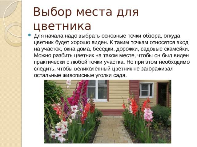 Выбор места для цветника