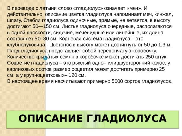 В переводе с латыни слово «гладиолус» означает «меч». И действительно, описание цветка гладиолуса напоминает меч, кинжал, шпагу. Стебли гладиолуса одиночные, прямые, не ветвятся, в высоту достигают 50—150 см. Листья гладиолуса очередные, располагаются в одной плоскости, сидячие, мечевидные или линейные, их длина составляет 50–80 см. Корневая система гладиолуса – это клубнелуковица. Цветонос в высоту может достигнуть от 50 до 1,3 м. Плод гладиолуса представляет собой перепончатую коробочку. Количество крылатых семян в коробочке может достигать 250 штук. Соцветие гладиолуса – это рыхлый одно– или двусторонний колос, у карликовых сортов размер соцветия может достигать примерно 25 см, а у крупноцветковых– 120 см. В настоящее время насчитывают примерно 5000 сортов гладиолусов. Описание гладиолуса