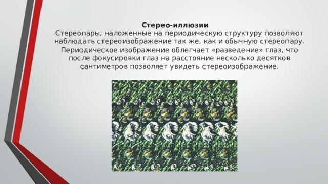 Стерео-иллюзии  Стереопары, наложенные на периодическую структуру позволяют наблюдать стереоизображение так же, как и обычную стереопару. Периодическое изображение облегчает «разведение» глаз, что после фокусировки глаз на расстояние несколько десятков сантиметров позволяет увидеть стереоизображение.
