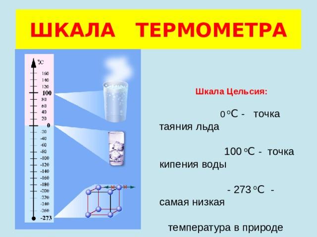 ШКАЛА ТЕРМОМЕТРА Шкала Цельсия:  0 о С - точка таяния льда  100 о С - точка кипения воды  - 273 о С - самая низкая  температура в природе