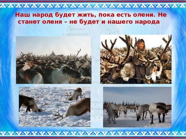 Наш народ будет жить, пока есть олени. Не станет оленя – не будет и нашего народа